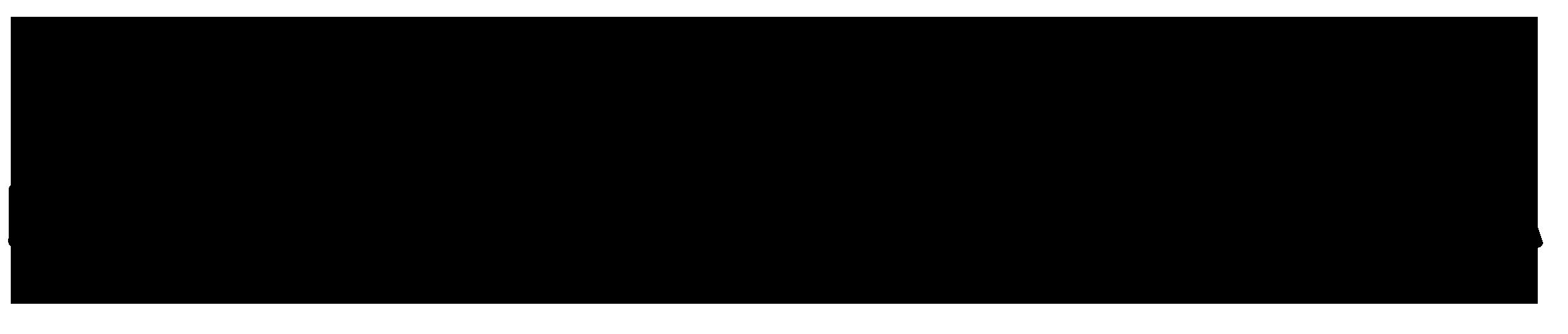 Selin Çanta